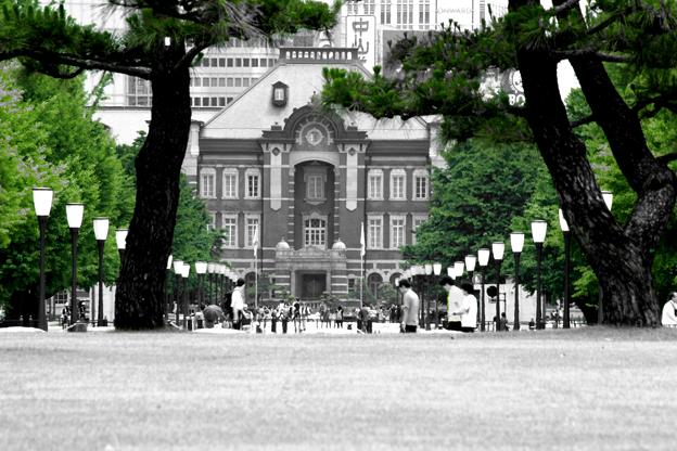 みどりな東京