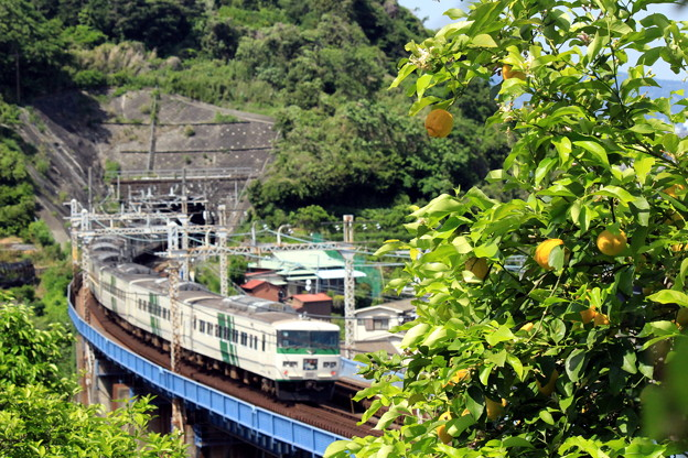 レモンな列車