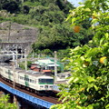 写真: レモンな列車