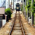 写真: 江ノ電来るよ♪