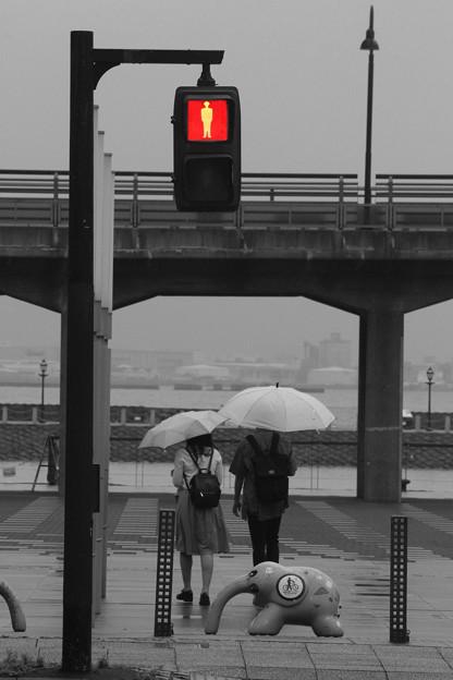 写真: Let The Rain