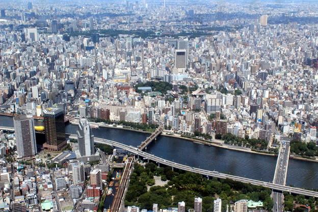 Top Of Japan