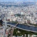 写真: Top Of Japan