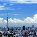 写真: Hot Summer Tokio