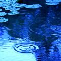写真: Circles On The Water