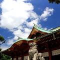 写真: 真夏の狛犬