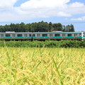 Photos: いなほ電車