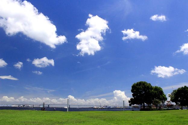海の見える公園