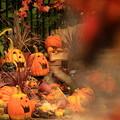 写真: Lucky Halloween