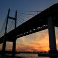 写真: 夕刻ブリッジ
