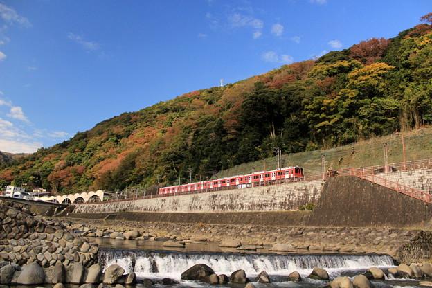 秋の登山電車
