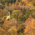 写真: 秋の空中散歩