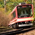 写真: 来たよ!登山電車♪