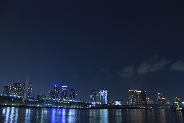 Toyosu Night