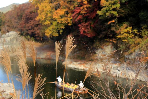 Photos: 秋の川下り