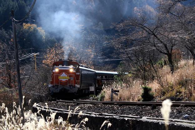 秋枯れのトロッコ列車