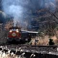 Photos: 秋枯れのトロッコ列車