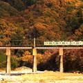 Photos: 秋渡る…