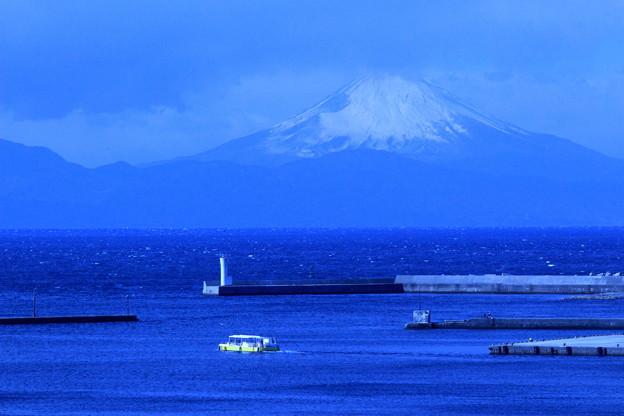 Photos: 蒼の富士