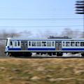 Photos: Hurry Hurry Seibu!
