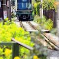Photos: 春の江ノ電