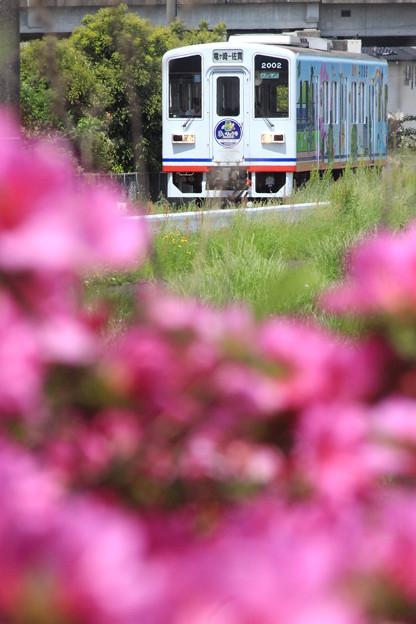ミニ・ローカル線