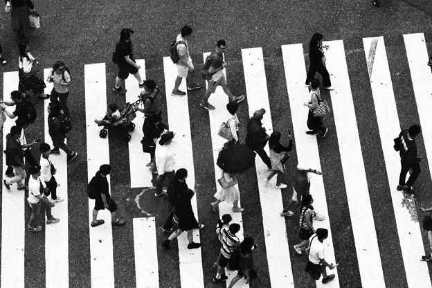 Photos: Shibuya People