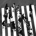 Shibuya People