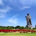 Photos: 浄土の庭