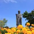 花咲く浄土