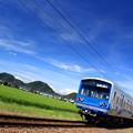 Photos: Hot Spring Train