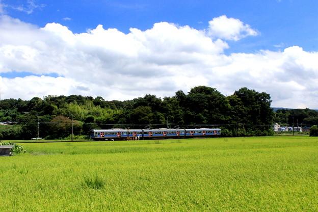 Photos: 晩夏のローカル線