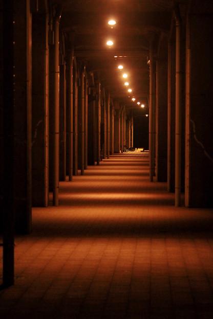 開港地の夜