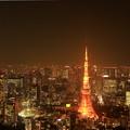 Let Me Fly On Roppongi Night