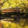 Photos: 渓谷電車