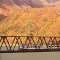 Photos: 紅葉電車