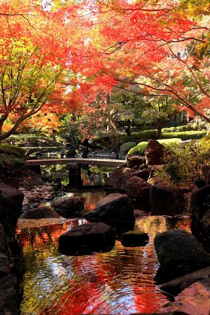 朱に染まる庭園