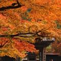 Photos: うるはしき古都