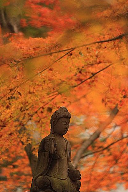 晩秋に佇む