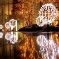 Photos: Illumination Reflection
