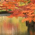 弘法の晩秋