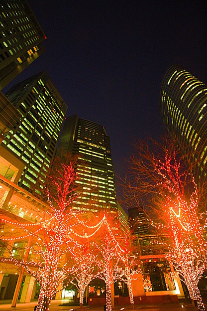 Shinagawa Lights