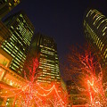 Photos: Shinagawa Lights