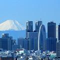 摩天楼と富士