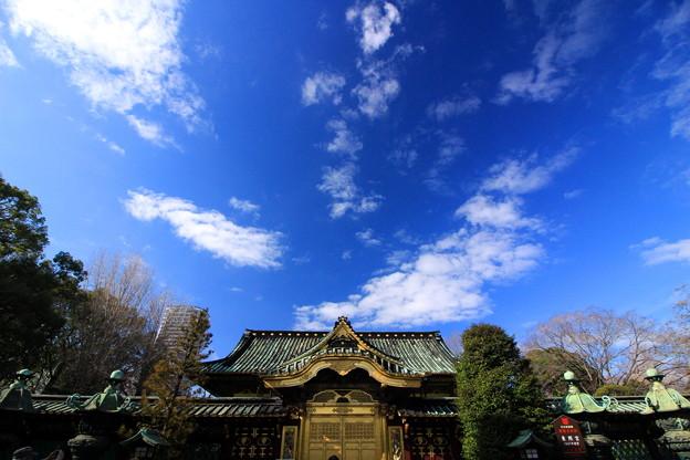 Tokugawa Sky