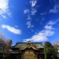 Photos: Tokugawa Sky