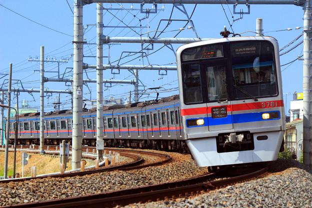 Take Me To Chiba