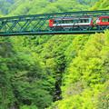 Photos: 新緑渡る登山電車