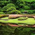 Photos: Reflection Japan