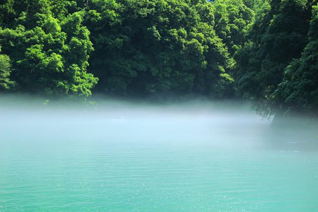霧たちこめる